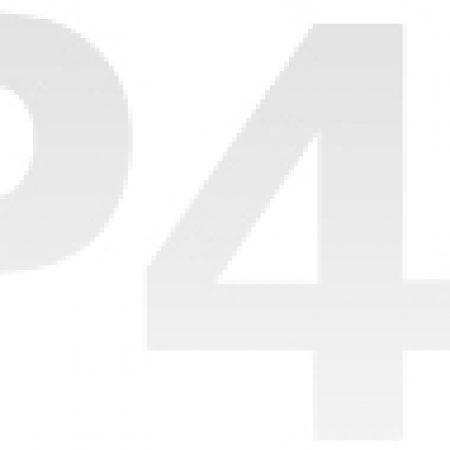 333 (5)